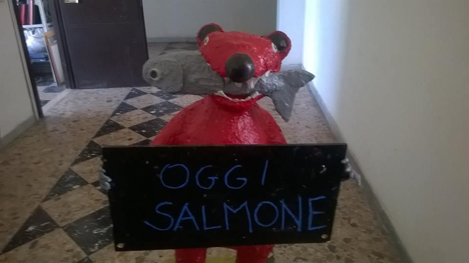 Orso con salmone